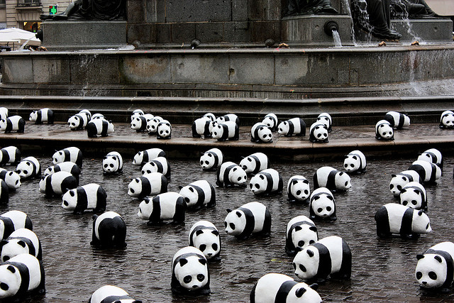 are you having a panda nightmare?