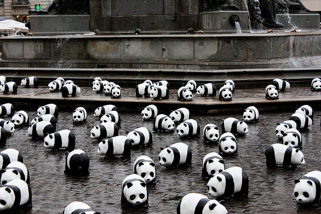 are you having a panda nightmare?