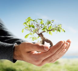 5 Tips for an Effective Lead Nurturing Campaign