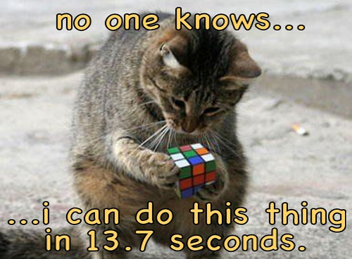 Cat Doing a Rubik's Cube Puzzle - HTML Email Newsletter Markup