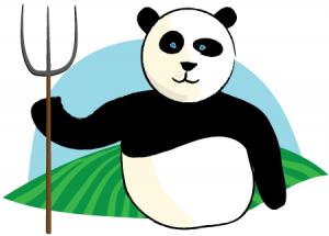 Google Panda SEO