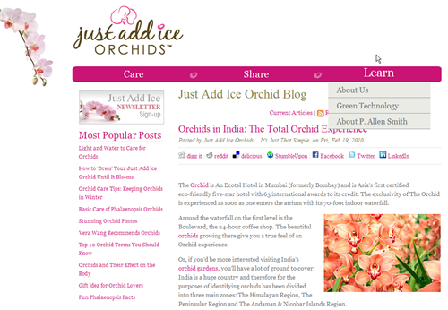 HubSpot Custom Design - Orchids