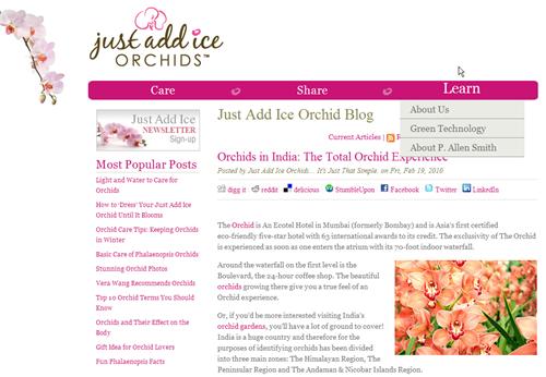 HubSpot Custom Design - Orchids