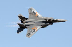 //cdn2.hubspot.net/hub/32387/file-13754068-jpg/images/hubspot-flies-better-with-a-service-partner.jpg