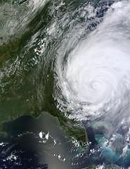 Inbound Marketing During a Hurricane