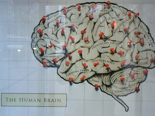 Inbound Marketing for the Human Brain – Using the Rule of 1, 3 & 7