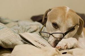 Inbound Marketing Week in Review: April 1, 2012
