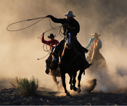 5 Inbound Marketing Steps to Lasso 100 New B2B Leads per Month