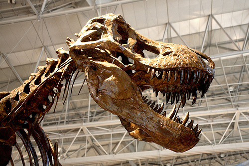 marketing agencies abandoning their blogs will be dinosaurs