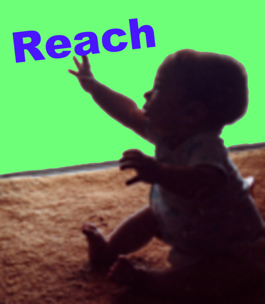 Social Media Management: Building Reach