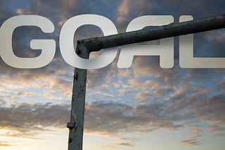 setting goals marketing data