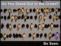 stand out with inbound marketing strategies