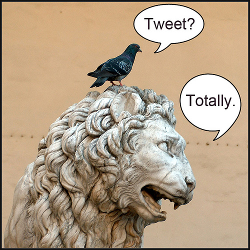 5 Top Tips: Social Media Behavior for Businesses