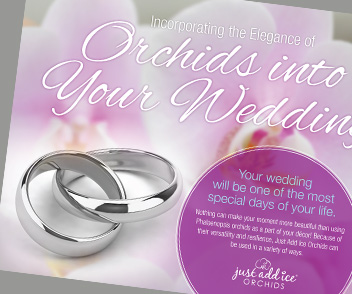 Preview eBook How To Use Orchids in your Wedding - Kuno Creative