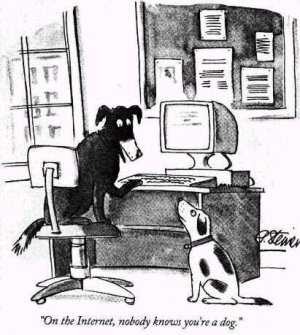 This cartoon illustrated by Peter Steiner accurately captures the issue surrounding internet privacy and anonymity.
