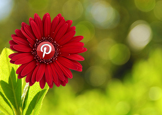 The updates in Pinterest in 2013 prove its a powerful marketing tool.