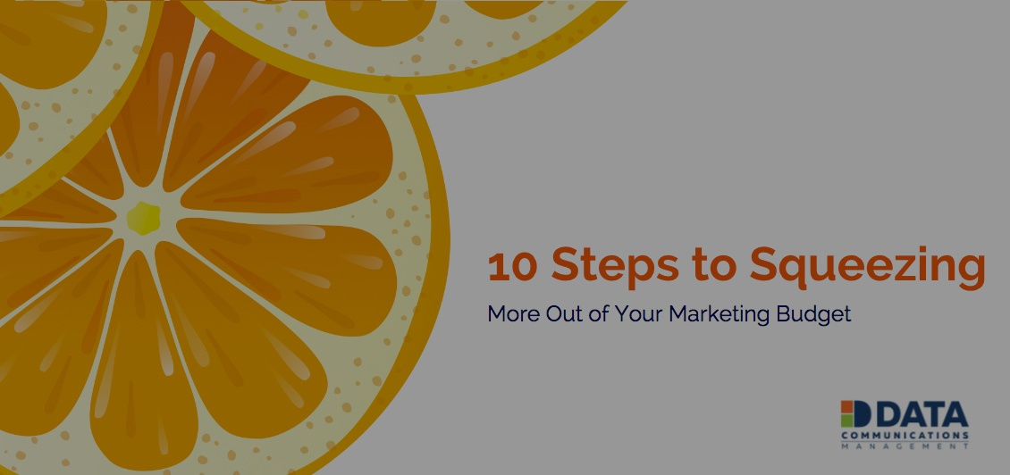 DATA GROUP - 10 Steps to Squeezing More Out of Your Marketing Budget