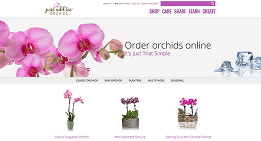 Just Add Ice Orchids eCommerce Site