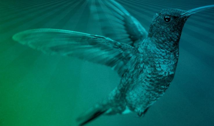 cta-hummingbird-ioffice.jpg