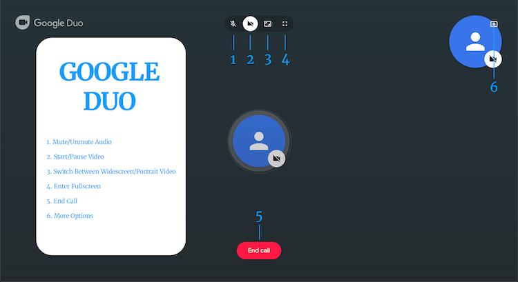 Google DUO-1