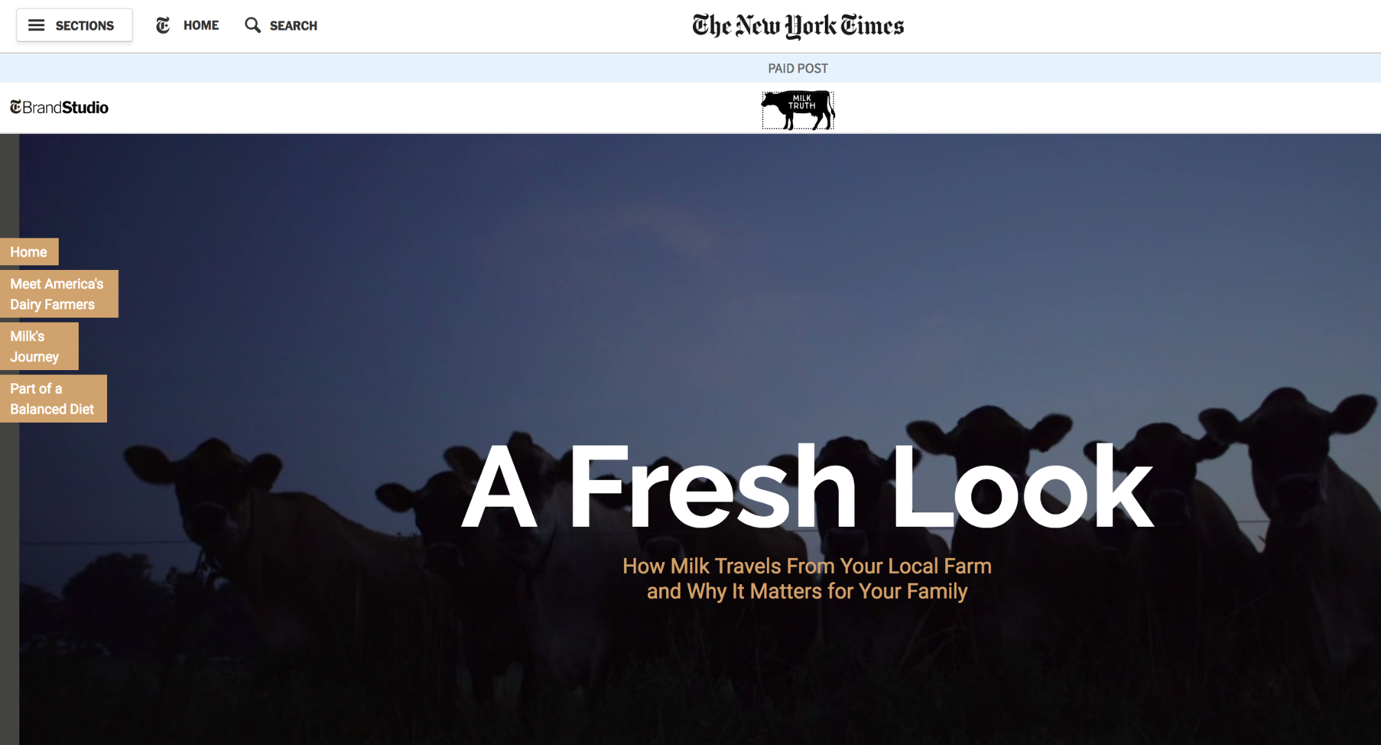 New York Times A Fresh Look