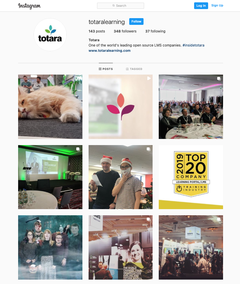 Totara on Instagram