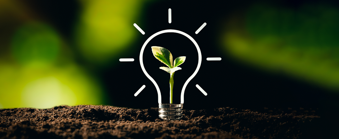 What is Sustainable Marketing?