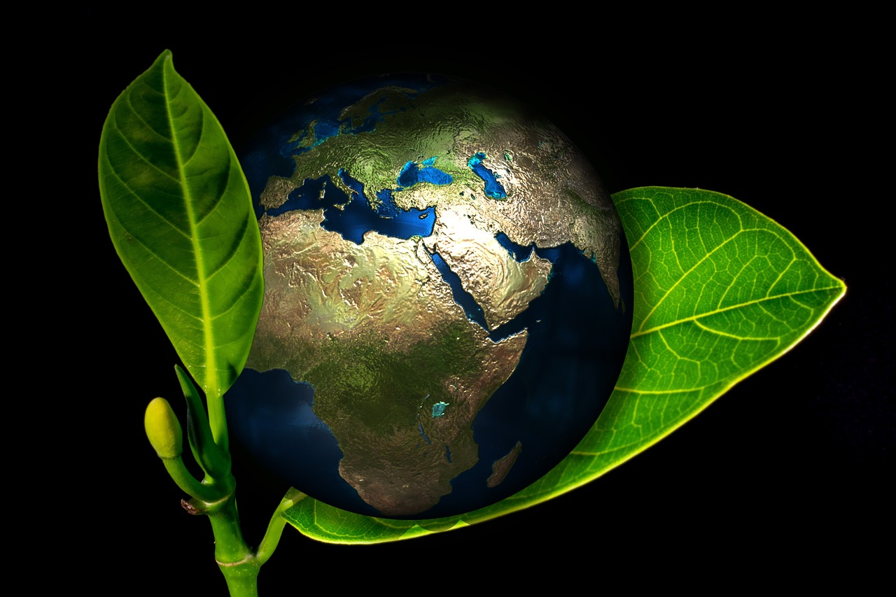 Taking Your Renewable Energy Content Strategy Global